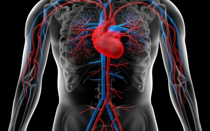 Biomedic-healthcare-magnetoterapia-circolazione-sanguigna